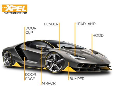 Xpel Paint Protection Film -lamborgin (clear bra)